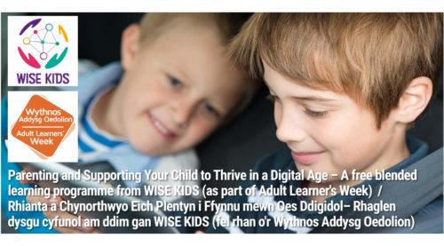 Flier for WISE KIDS programme