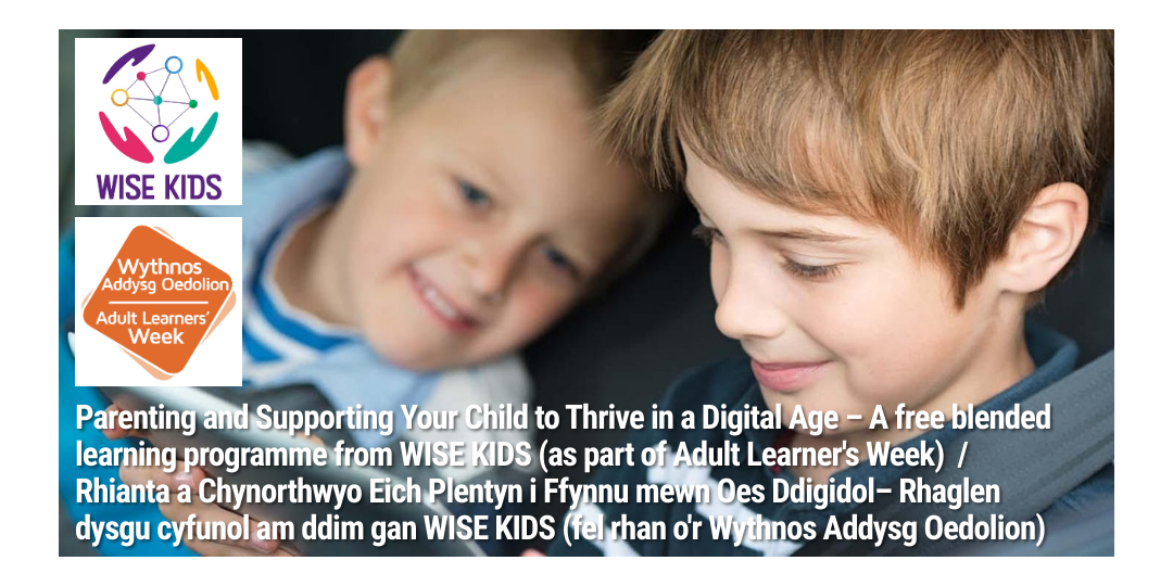Flier for WISE KIDS programme